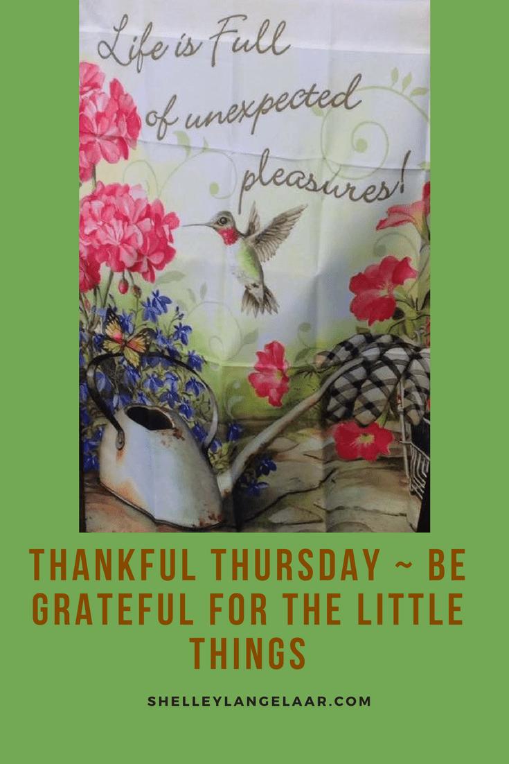 Grateful fir the little things