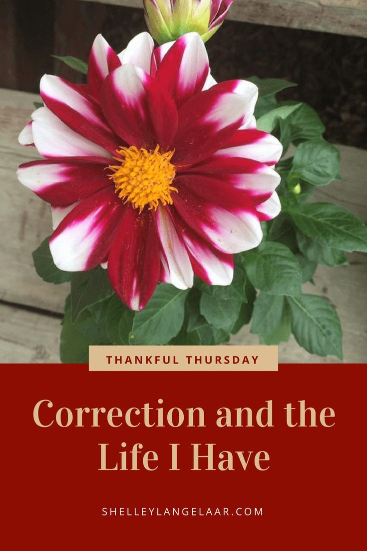Thankful Thursday — Correction and The Life I Have