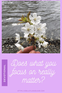 Does what I focus on really matter ? Devotional