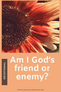 Am I God's Friend or Enemy? Created to Stand out - christian devotional